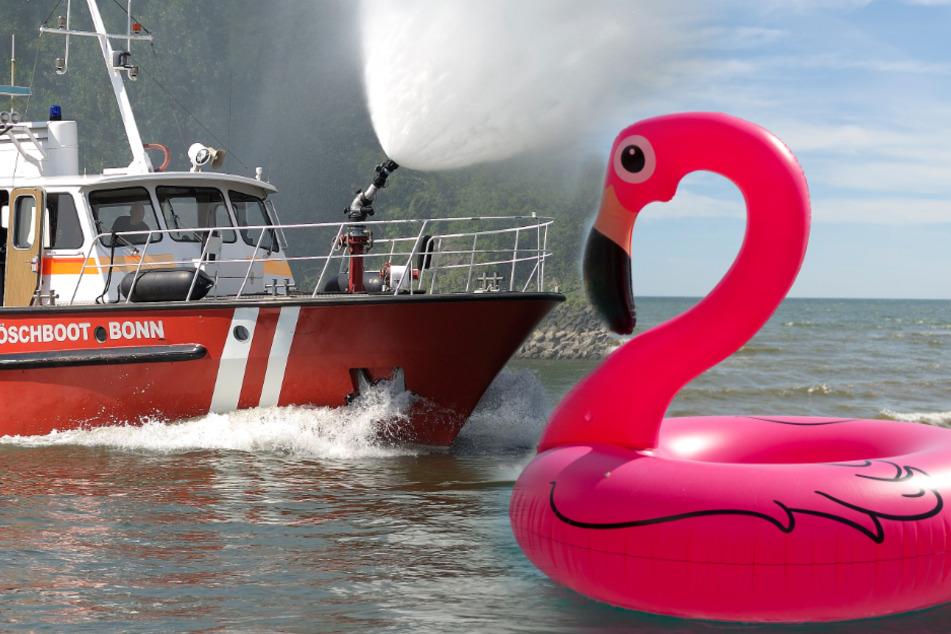 Mann auf Gummi-Flamingo sorgt für Großeinsatz!