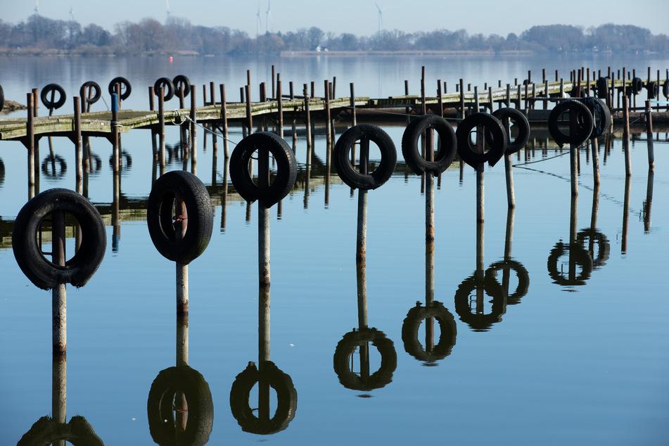Auch im niedersächsischen Dümmer See wurde der Stoff nachgewiesen.
