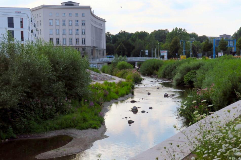 Es drohen bis zu 50.000 Euro Bußgeld: Chemnitz verbietet Wasserentnahme