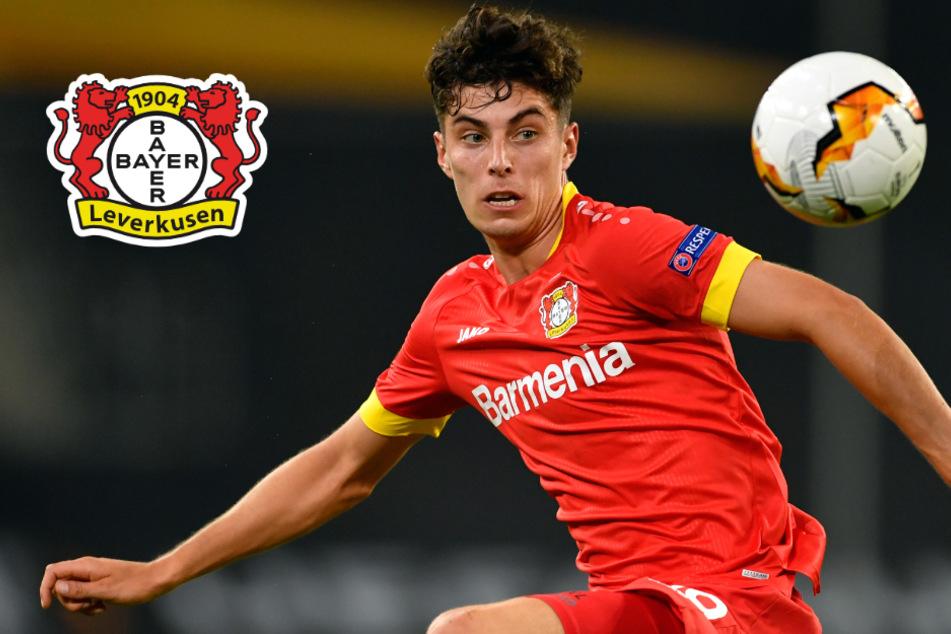 Kai Havertz: Leverkusen bestätigt Verhandlungen mit mehreren Klubs