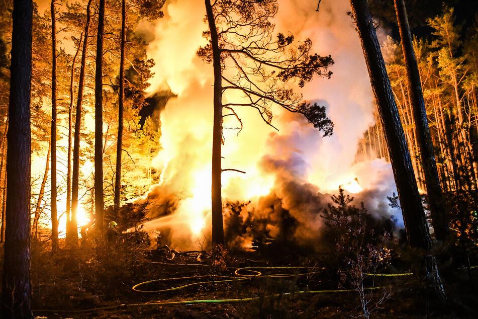 Gegen 6.30 Uhr konnte die Feuerwehr Entwarnung geben.