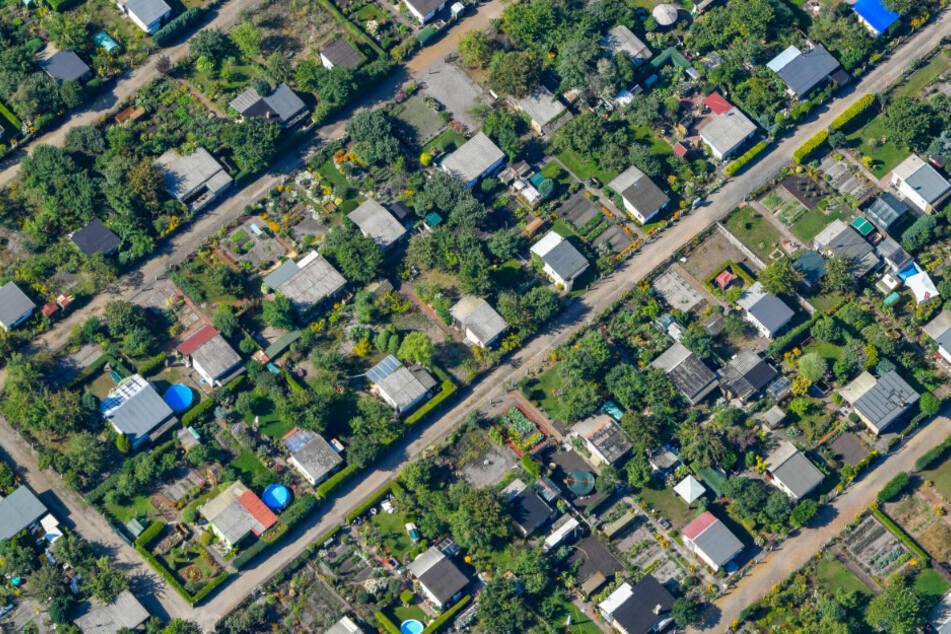 Eine Kleingartenanlage am Rande von Cottbus (Luftaufnahme aus einem Flugzeug). (Archivbild)