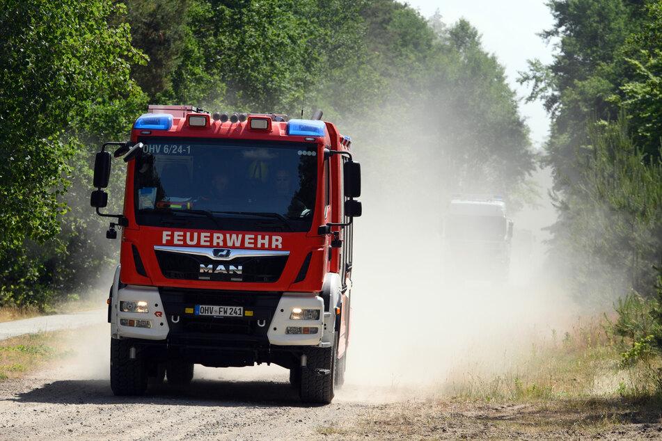 Fachkundige Feuerwehrleute befreiten schließlich die Natter. (Symbolbild)