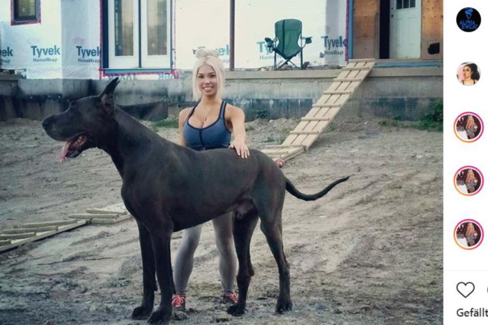 Frau pferd besteigt [eBook] patricia