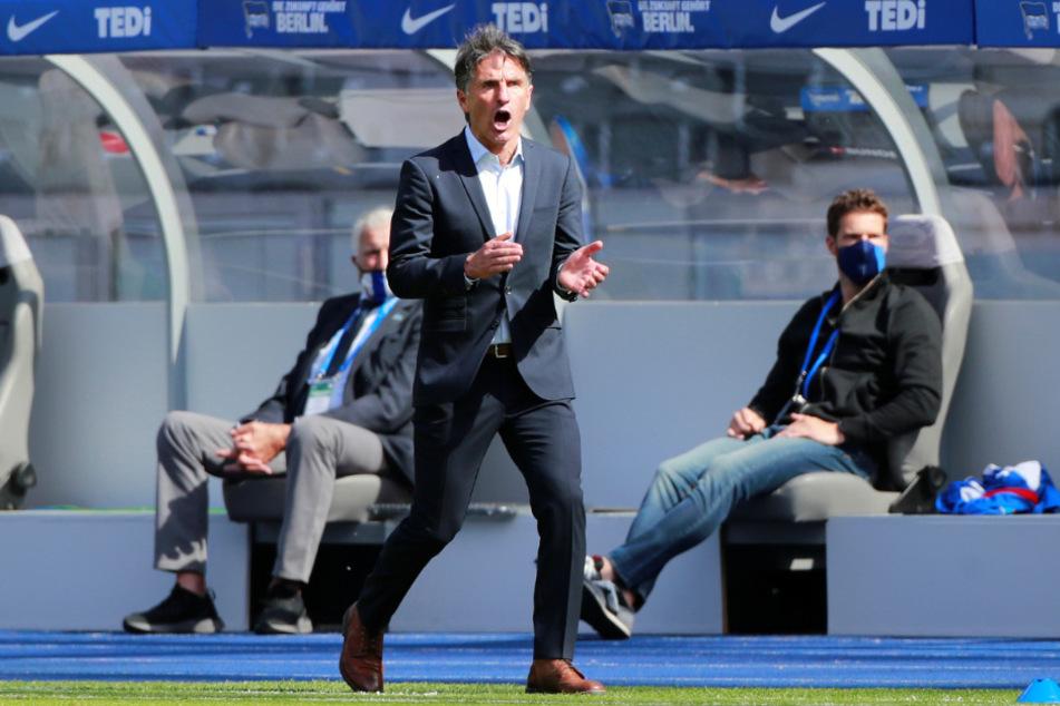 Bruno Labbadia bleibt auch im vierten Spiel als Hertha-Trainer ungeschlagen.