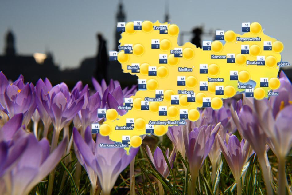 Dresden: Endspurt im Februar: Wetter beschert Sachsen mit mehr als 20 Grad einen herrlichen Vorfrühling!