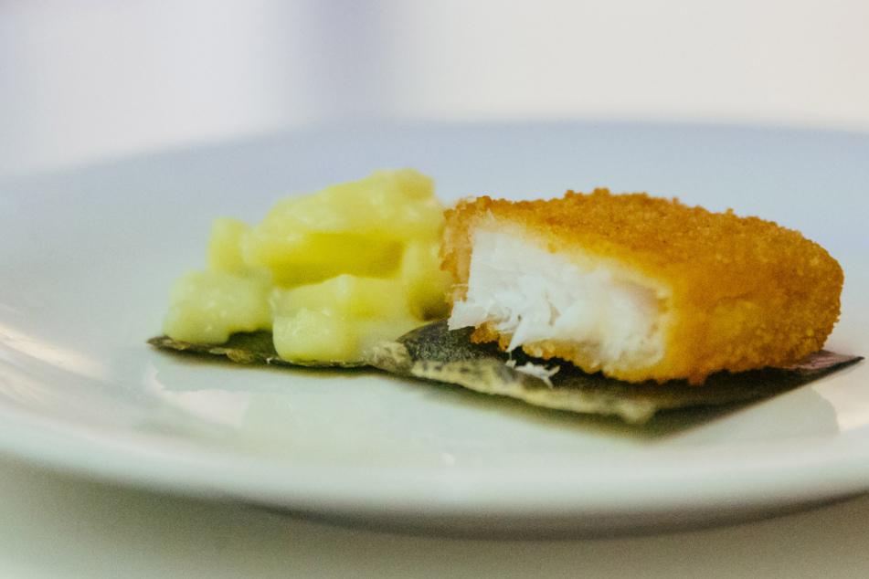 Snackbox aus Algen: Kommt jetzt die klimafreundliche Verpackung?