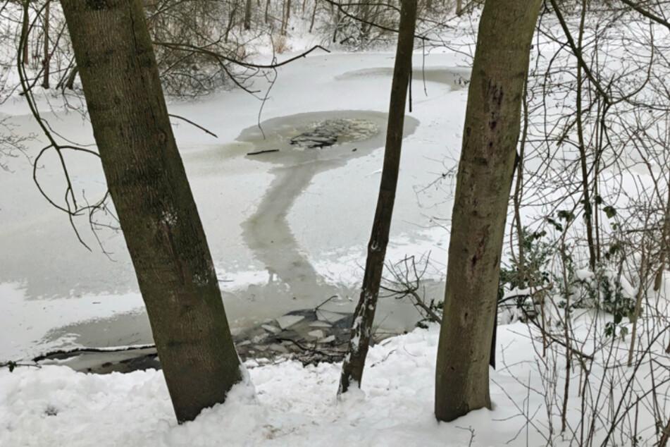 Der 10-Jährige brach auf diesem Teich ein und konnte gerade noch gerettet werden.