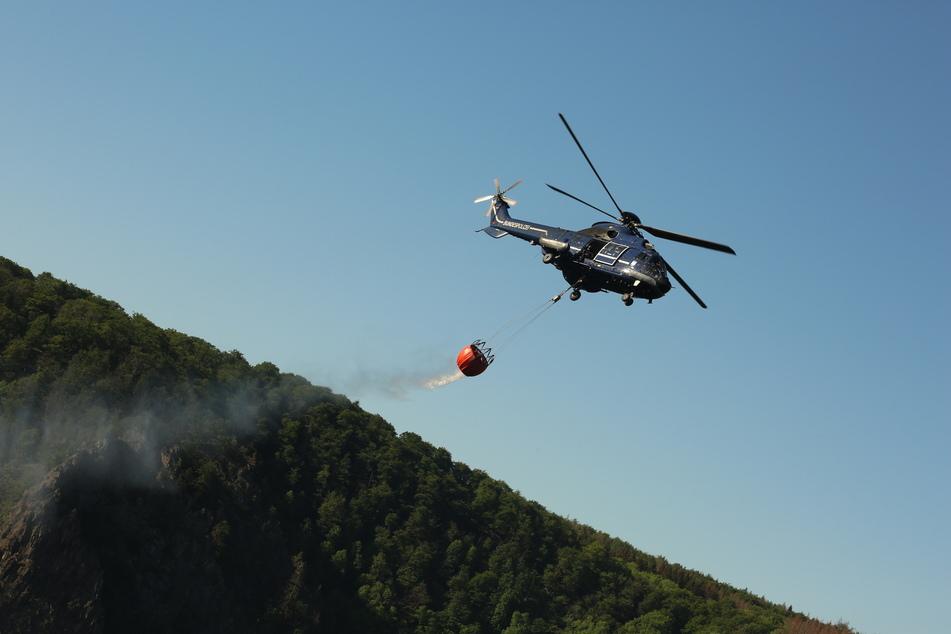 Anfang Juni vergangenen Jahres hatte es einen Waldbrand im Bodetal in Sachsen-Anhalt gegeben. Zwei Tage haben die Einsatzkräfte gebraucht, ehe es vollständig gelöscht war. (Archivbild)