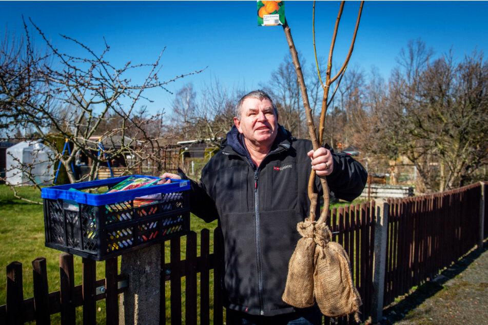 Matthias Lehmann (59) ist mit Obstbäumen und Saatgut auf dem Weg in seinen Garten.