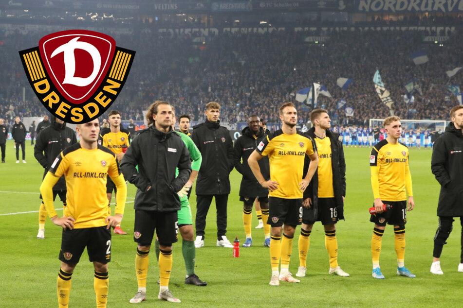 Dynamo schießt zu viele Fahrkarten: Effektive Schalker Lehrstunde!