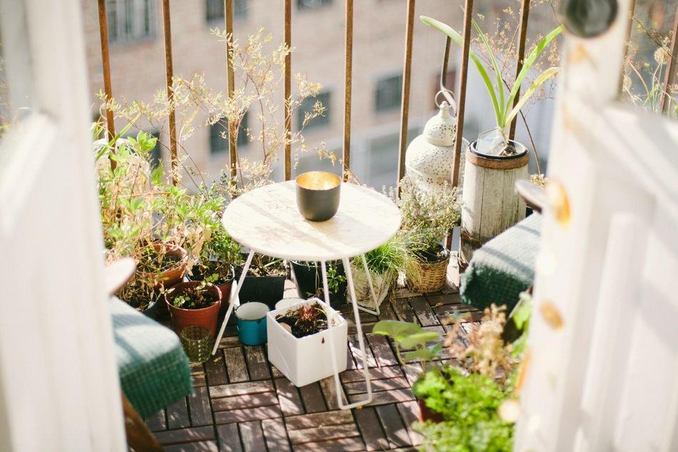 Ein Ost- bzw. Westbalkon ist für den Gemüseanbau auf dem Balkon ideal.