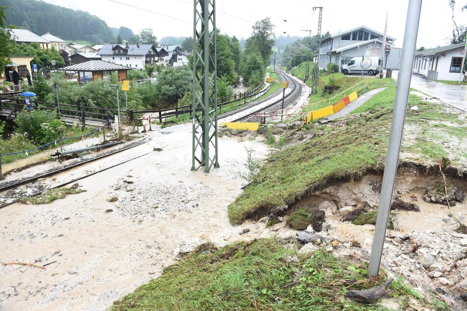 Hochwasser hat weitreichende Folgen: Wenn die Pegelstände von Gewässern steigen, ist der Schaden enorm - auch für Tiere.