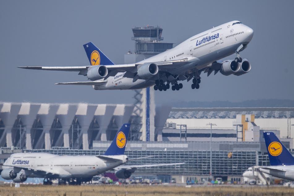 Erste Airline fordert Coronavirus-Impfpflicht für Passagiere: Zieht Lufthansa nach?