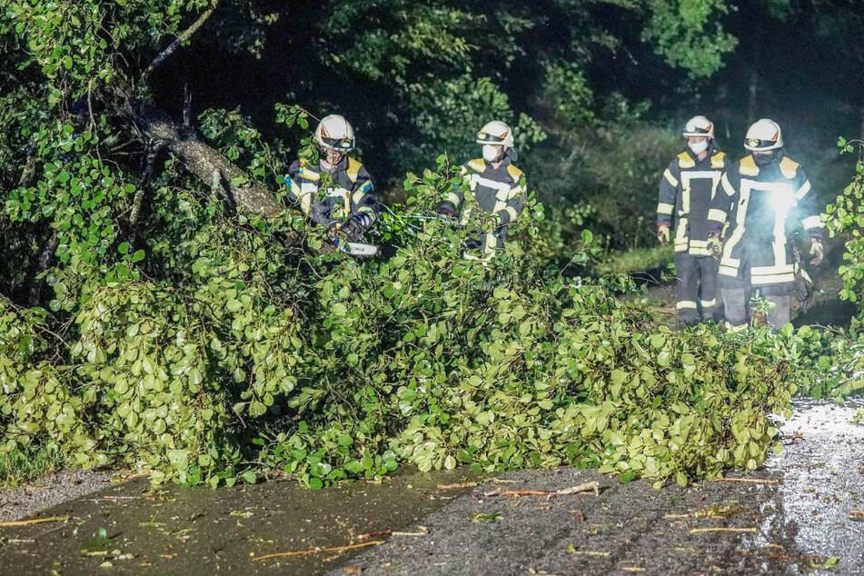Unwetter ziehen übers Ländle: Mann vom Blitz getroffen, Erdrutsche