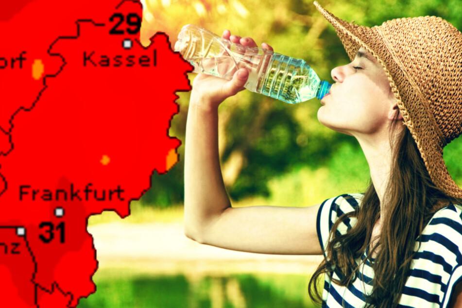 Bis zu 38 Grad! Hitzewelle rollt auf Frankfurt und ganz Hessen zu