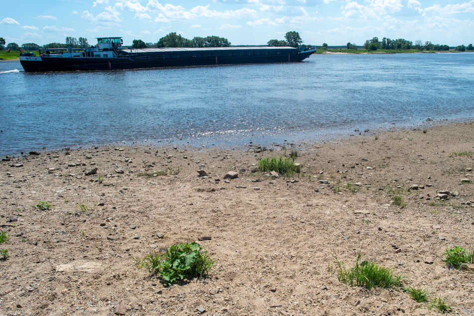 Zu wenig Wasser! Immer weniger Güterverkehr auf der Elbe