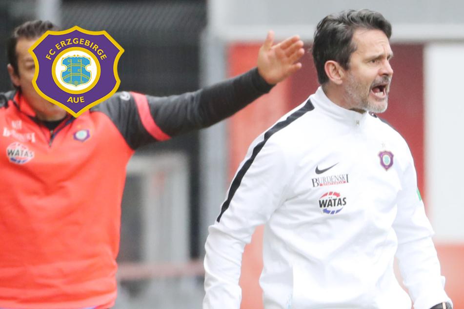 """Aue-Coach Schuster nach Düsseldorf-Pleite: """"Zu brav, ohne Druck und Gier"""""""