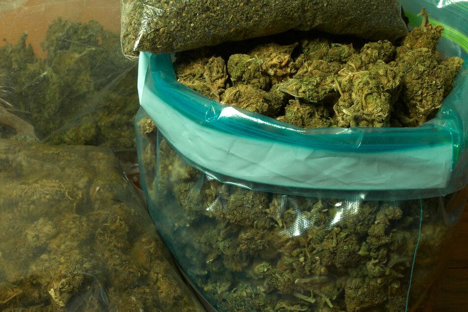 Bei den Durchsuchungen fand die Polizei mehr als 2,5 Kilo Marihuana. (Symbolbild)