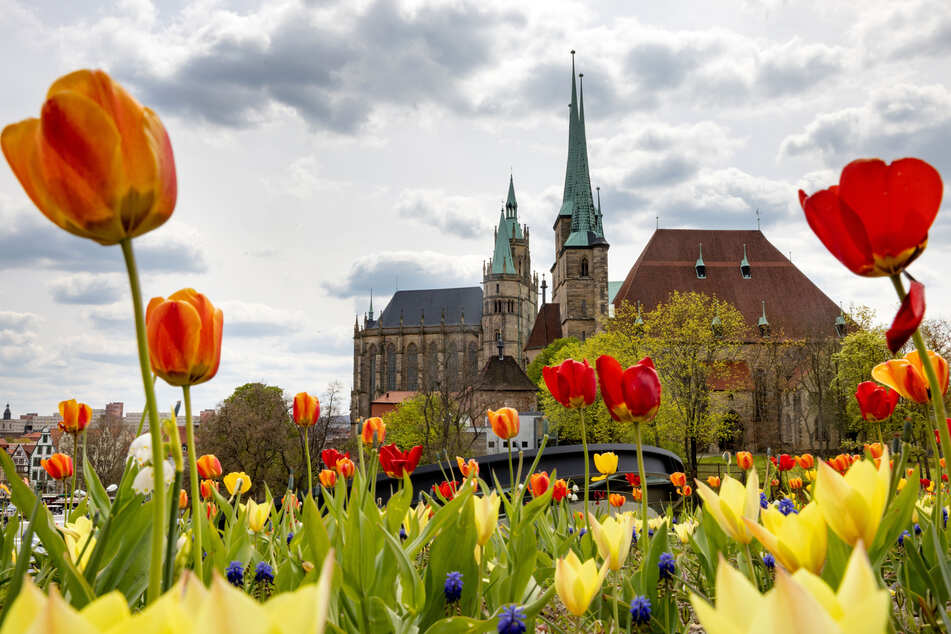 Die Stadt Erfurt hat in Thüringen noch die geringsten Verluste.