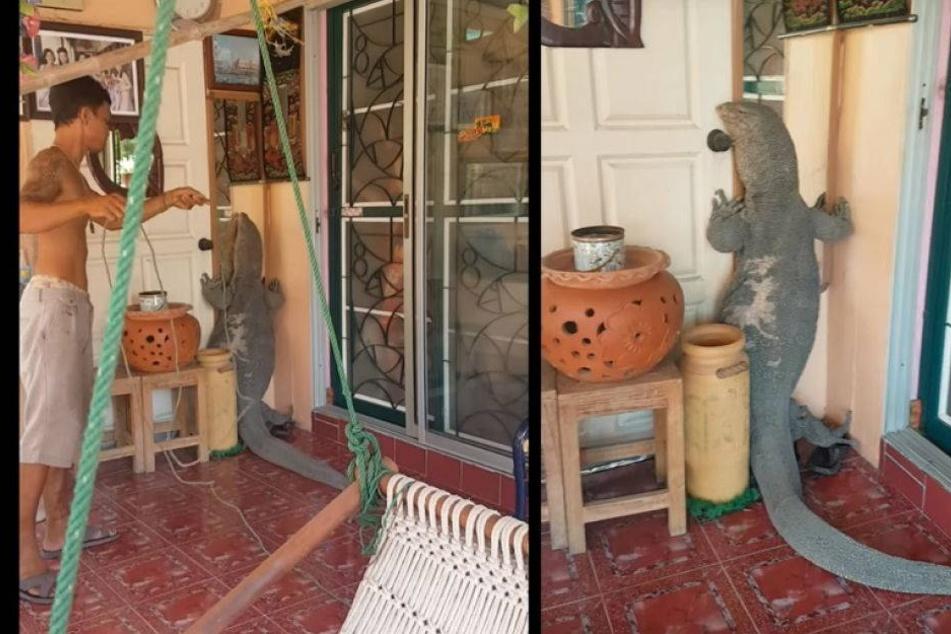 Mann kommt nach Hause und findet dieses Monster an seiner Haustür