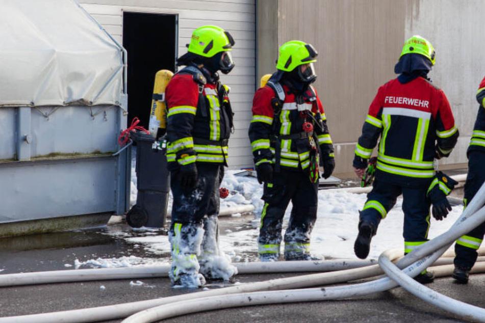 3000 Schweine starben bei Großfeuer: Polizei ermittelt wegen Brandstiftung