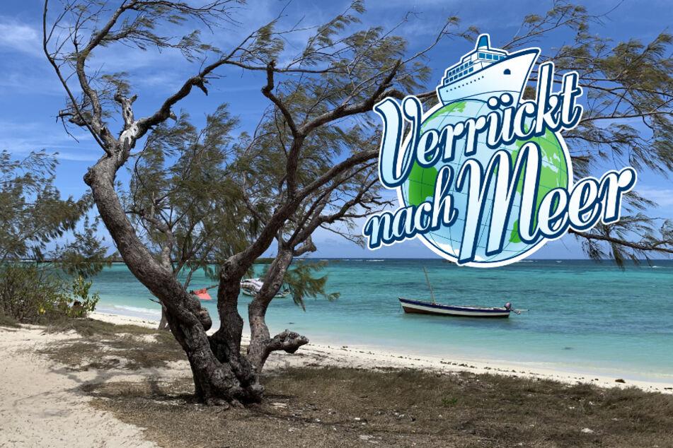 Verrückt nach Meer: Naturspektakel auf Madagaskar! Das passiert in der Folge vom 7. Mai