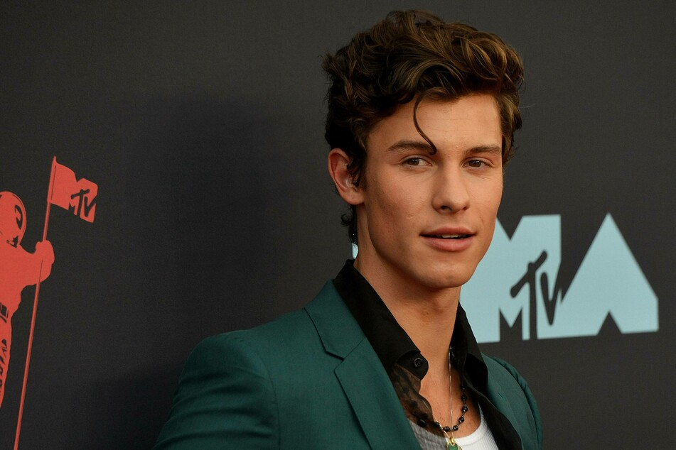 Shawn Mendes teased his upcoming Netflix documentary to the public with a big revelation.