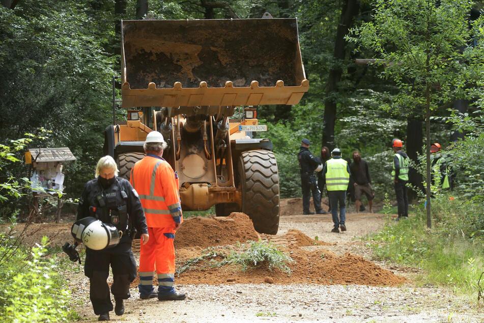 Der Hambacher Forst ist zum Symbol des Widerstands gegen den Braunkohleabbau geworden.