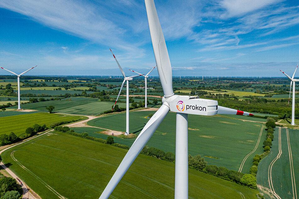 Wer echten Öko-Strom beziehen will, sollte zu diesem Anbieter wechseln