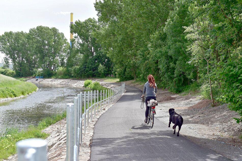Auf dem Chemnitztalradweg kann man gemütlich am Fluss entlang fahren.