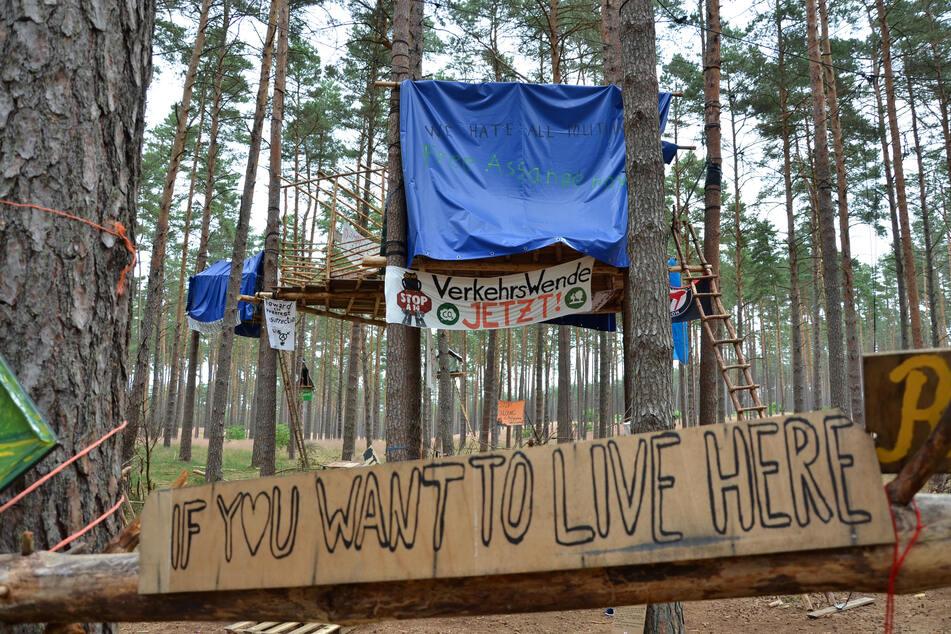 Im Losser Forst leben seit einigen Monaten Waldbesetzer.