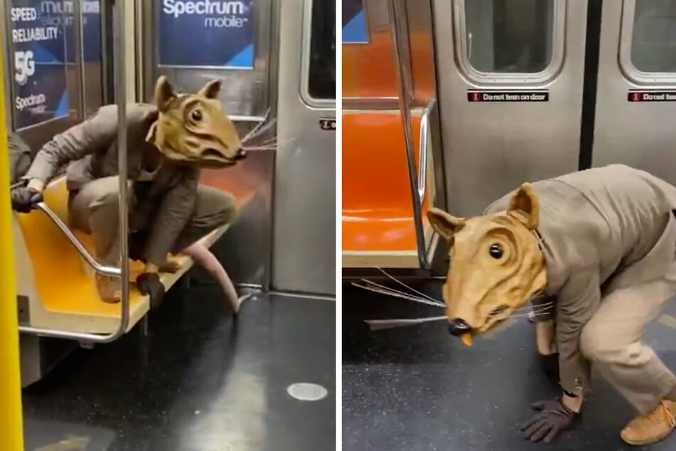 The elegantly-dressed Buddy the Rat scurries around the New York subway.