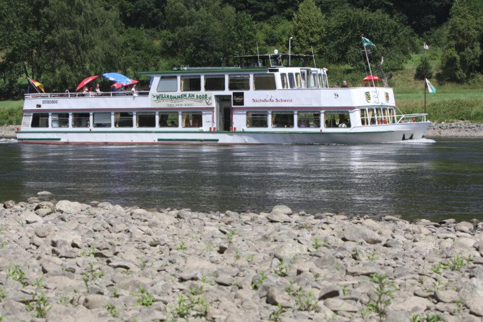 Die Personenschiffahrt Oberelbe verkehrt wieder täglich.