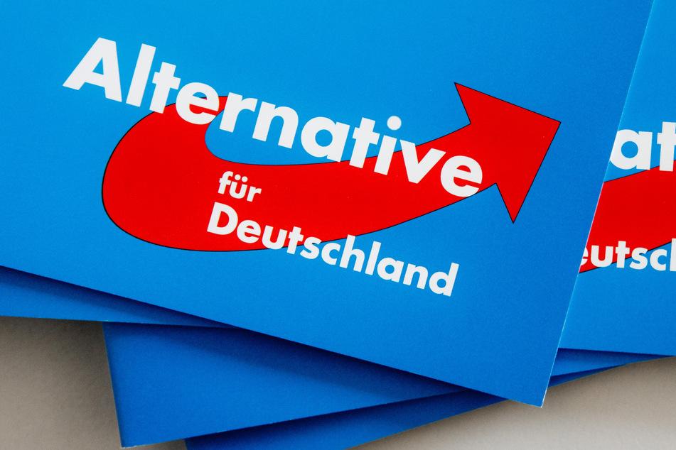 Das Logo der Alternative für Deutschland (AfD) auf dem Landesparteitag der AfD auf Parteibroschüren.