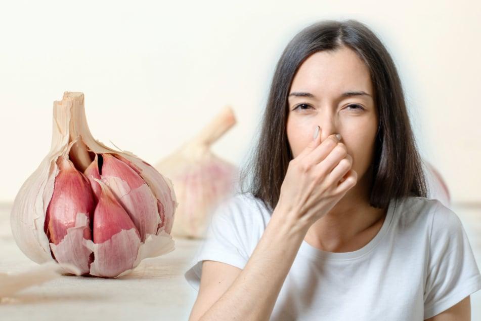 Wie bekommt man Knoblauchgeruch wieder weg? Diese Hausmittel sind besonders hilfreich!
