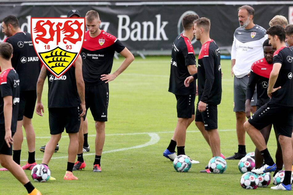 Beim VfB Stuttgart kristallisiert sich eine Stammelf heraus