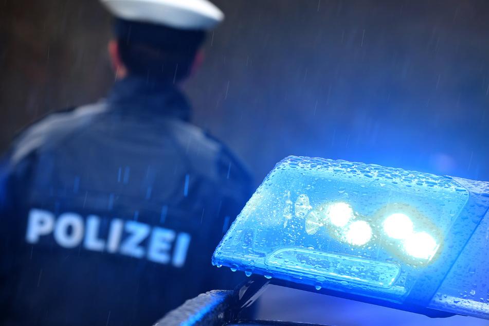 Frau flieht mit Hund, der beschlagnahmt werden soll, und kracht in Polizeiauto