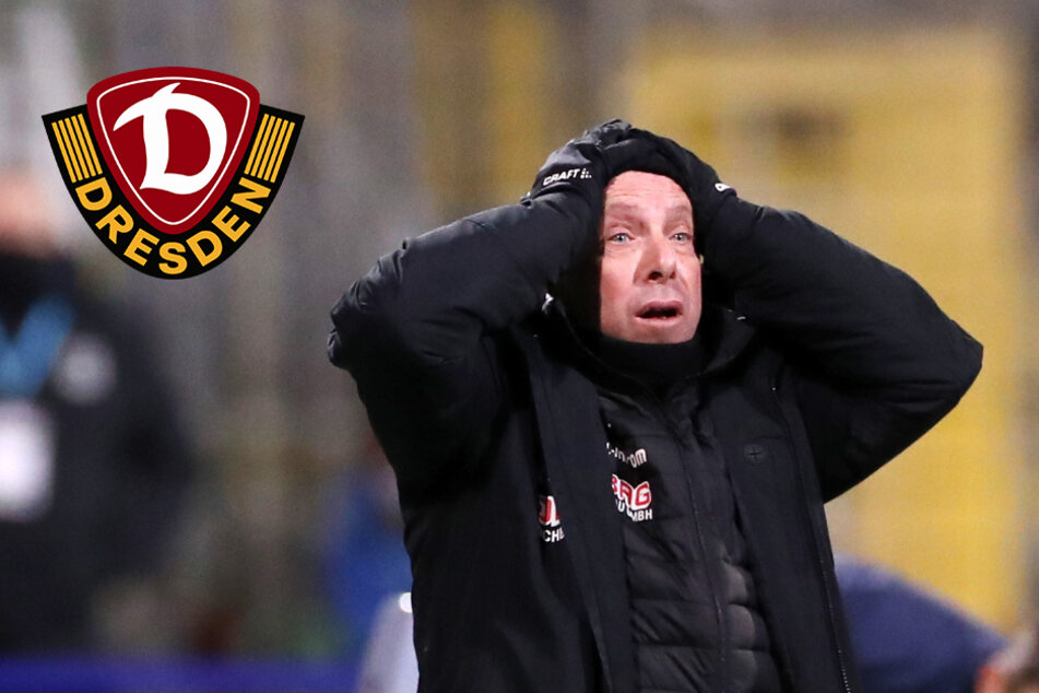 """Dynamo-Trainer verärgert: """"Am Ende war es ein bisschen zu wild"""""""