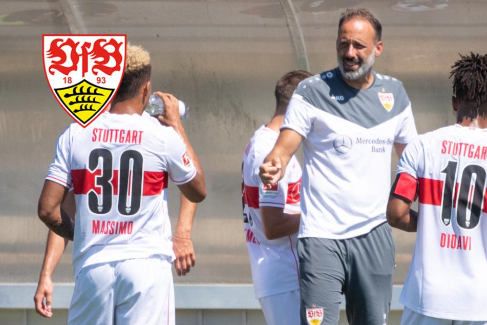 VfB-Coach Matarazzo trotz Fan-Nachteil im Pokal gegen Rostock voller Vorfreude