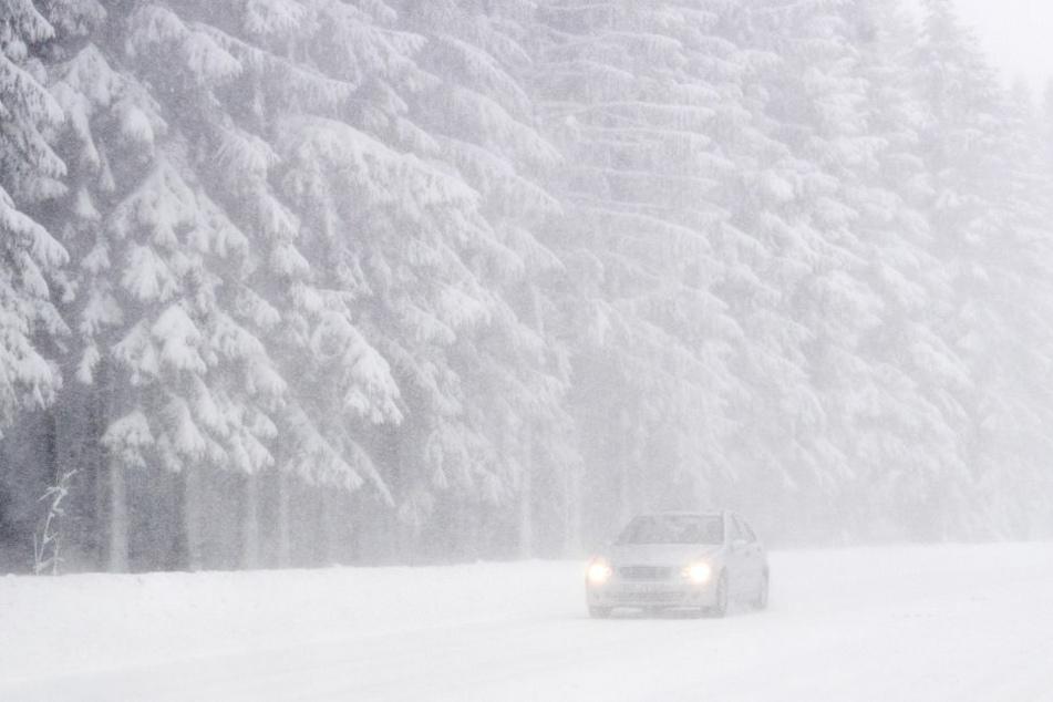 Nach Einschätzung des Meteorologen Stefan Kreibohm vom Wetterstudio Hiddensee wird der erwartete Schneesturm wohl an Mecklenburg-Vorpommern vorbeiziehen. Der ADAC rät dennoch dazu, das Auto im Zweifelsfall stehen zu lassen. (Symbolfoto)