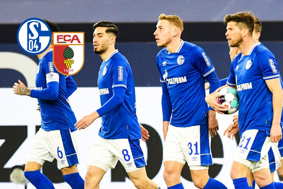 Schalke-Sensation! Knappen feiern gegen Augsburg überraschend zweiten Saisonsieg
