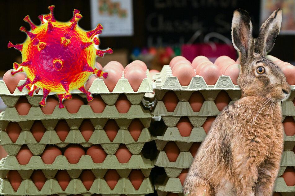 Was der Osterhase wohl davon hält: Nimmt uns das Coronavirus unser Oster-Ei?
