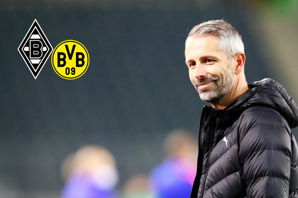 Trainer-Hammer bestätigt: Marco Rose verlässt Gladbach und wechselt zum BVB!