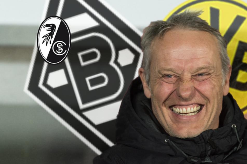 """BVB oder Gladbach statt SC Freiburg? Streich herrlich ehrlich: """"ischmer ja au gschmeichelt"""""""