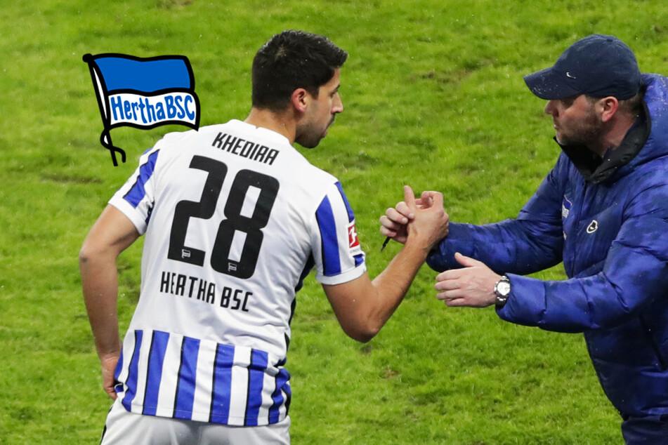 Hertha-Trainer Pal Dardai sieht Sami Khedira vorerst nicht in der Startelf