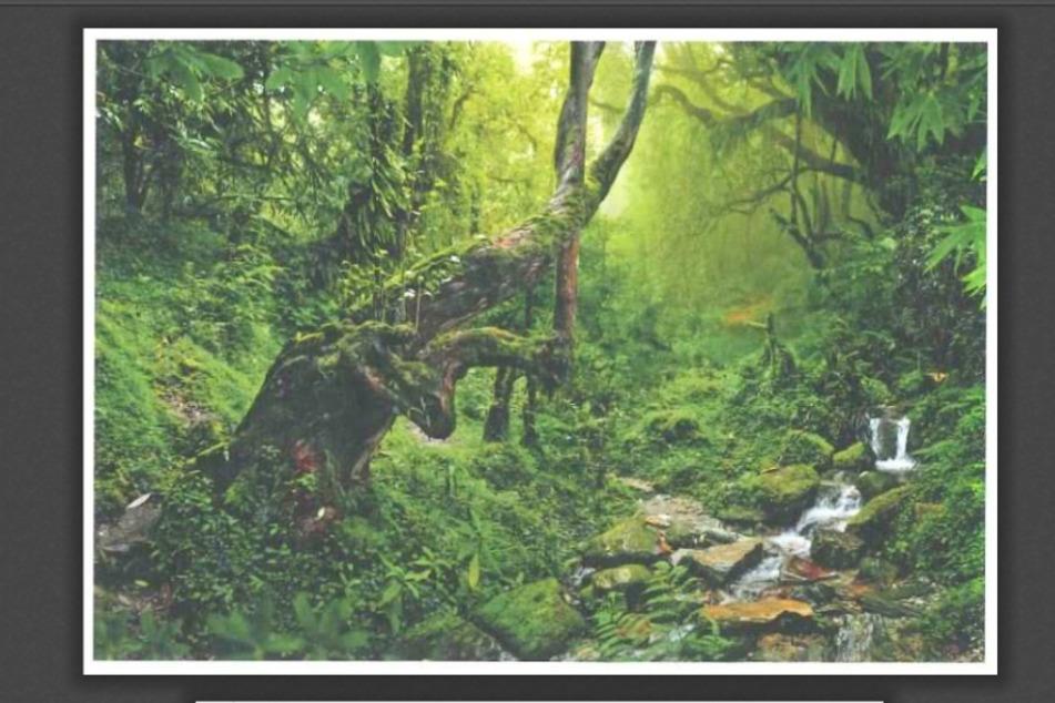 Die Vorderseite der Postkarte ziert ein sogenanntes Stockfoto.