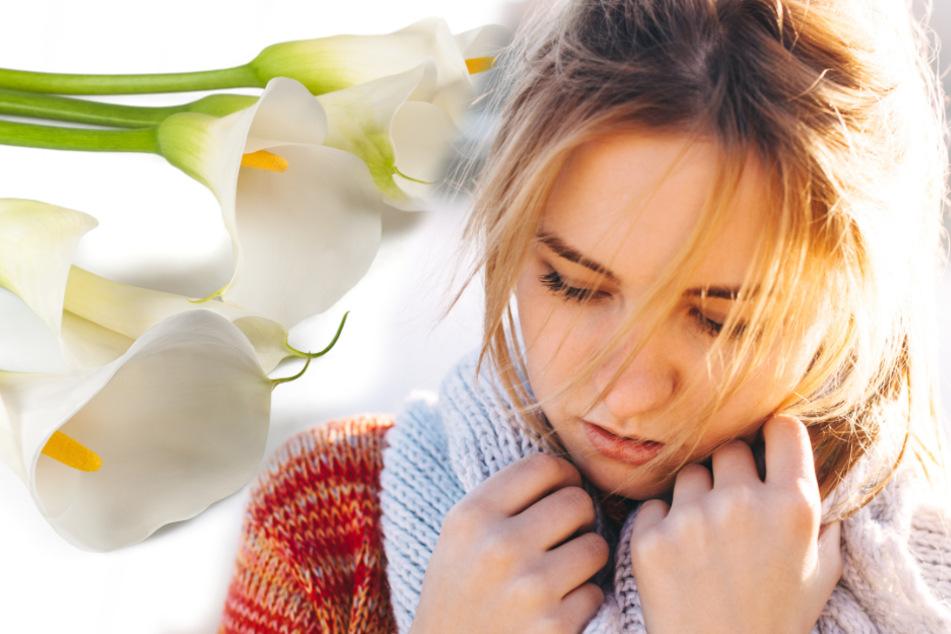 Frau erfährt durch vermeintlich romantische Geste, dass ihr Mann sie betrügt