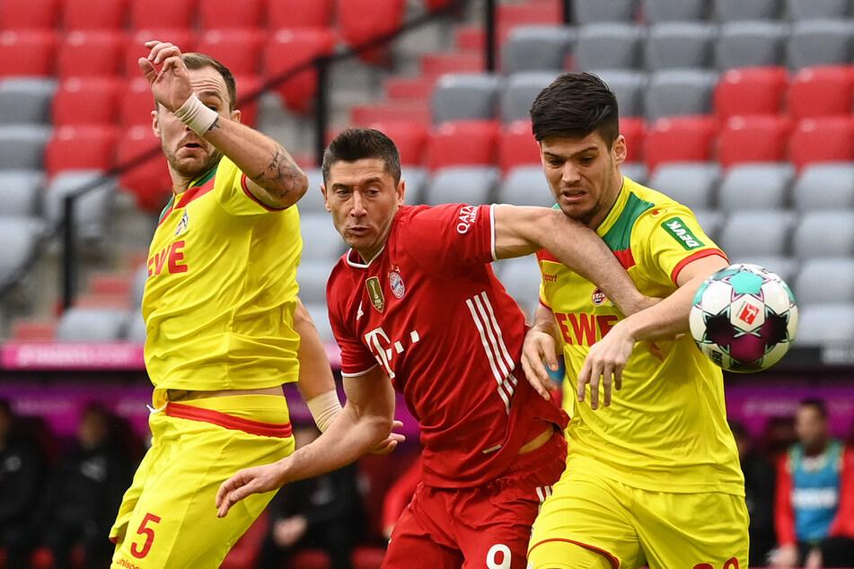 Jorge Meré (24, r.) hat seinen Wechselwunsch verkündet, der 1. FC Köln plant mit dem Innenverteidiger aber für die nächste Saison.