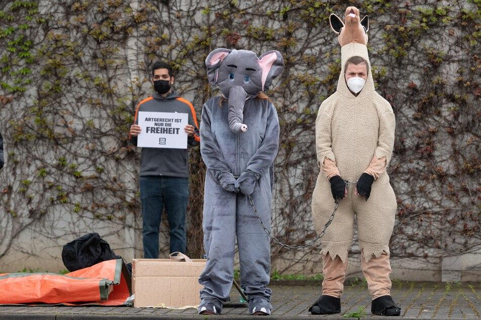 Teilnehmer der Protestaktion auf dem Dresdner Messegelände.